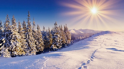 Погода на зиму в Україні: перші прогнози від кількох синоптиків