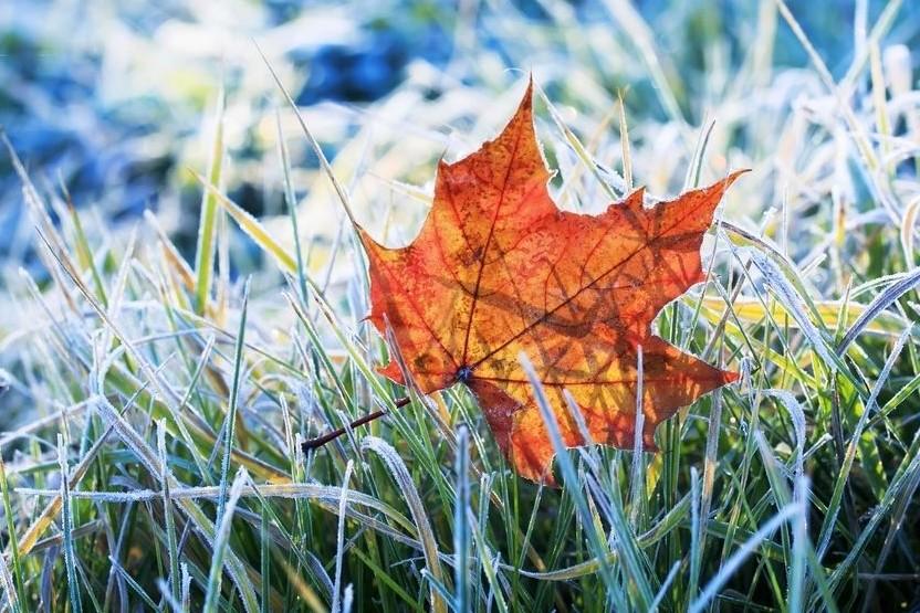 Йдуть морози і сніг: синоптики попередили про похолодання