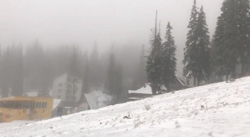 На Закарпатті сьогодні випав сніг: опубліковано відео засніженого гірськолижного курорту Драгобрат