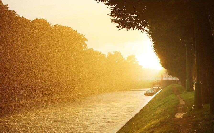 Синоптики розказали, коли в області закінчаться дощі