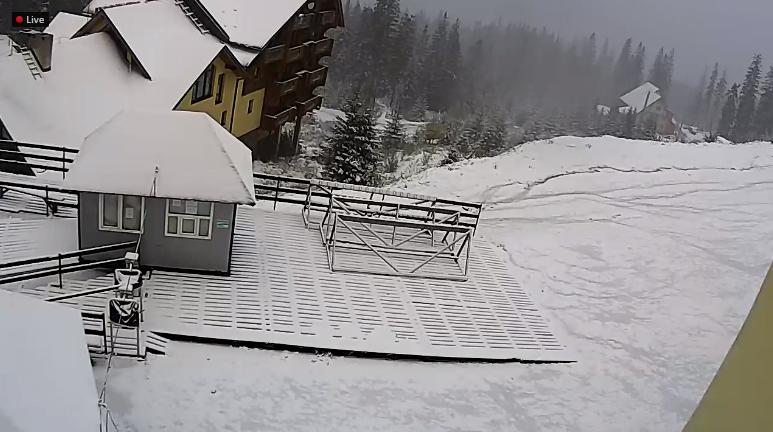 Гори Закарпаття засипає снігом