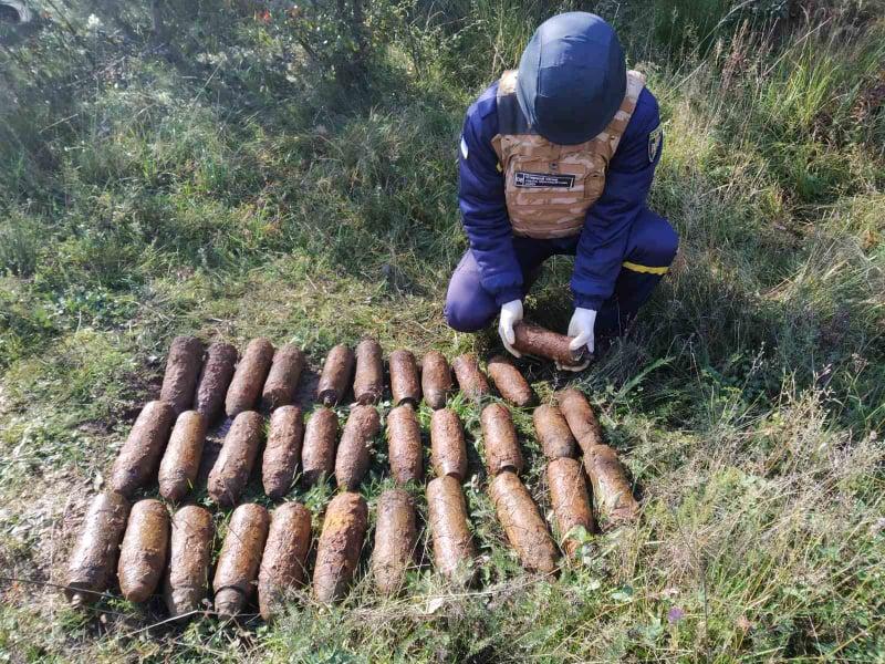 Під час збирання грибів чоловік виявив небезпечну знахідку