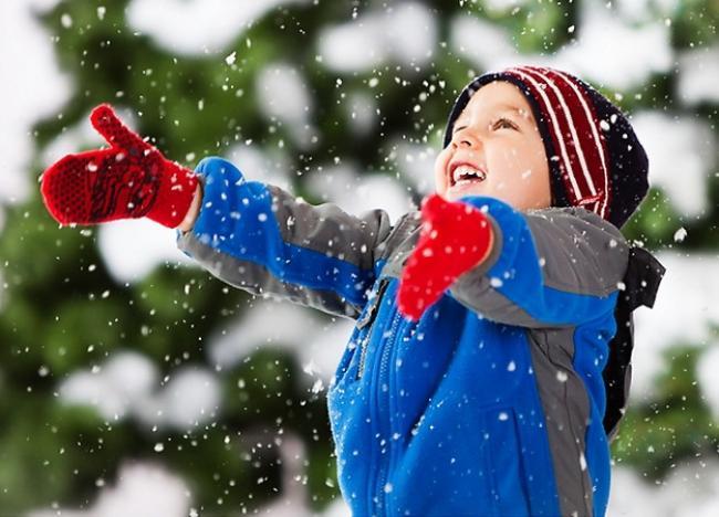 """""""Подвійні"""" зимові канікули – реальність чи фейк: роз'яснення освітян"""