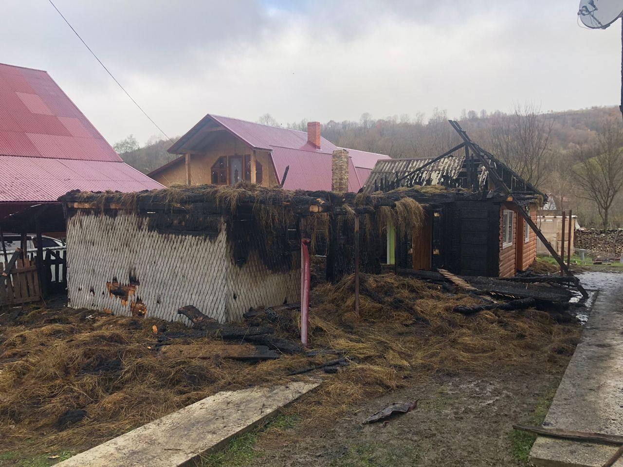 Загинула корова та кури: рятувальники розповіли детальніше про пожежу у селі