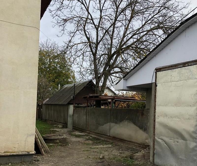 На Ужгородщині поліцейські за кілька хвилин розкрили крадіжку бензокоси