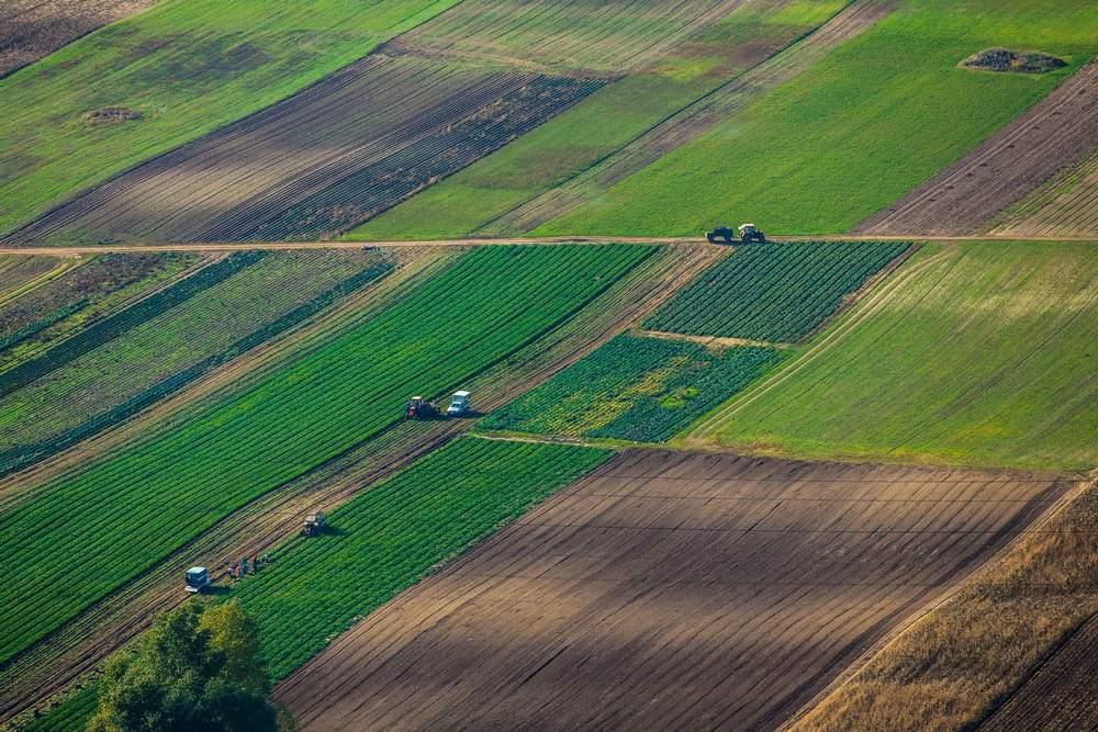 Уряд затвердив постанову про передачу земель територіальним громадам