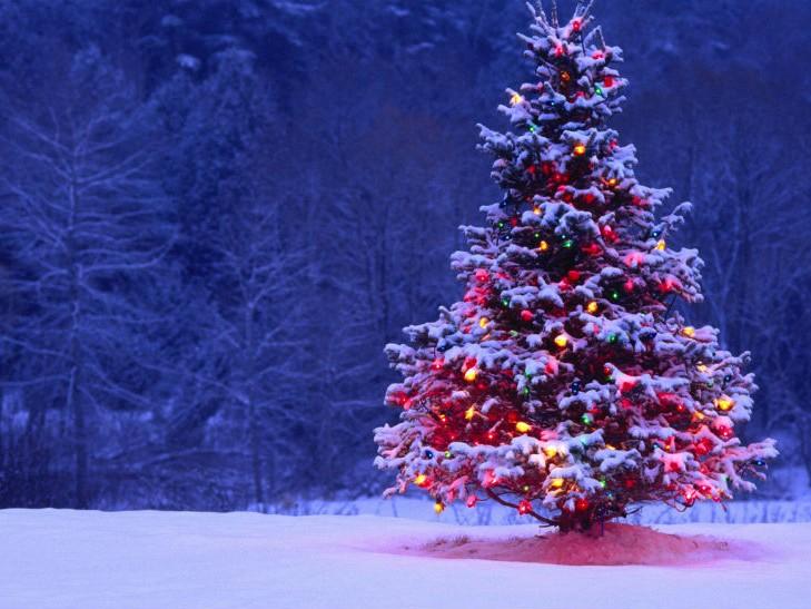 В Україні готові ввести повний локдаун на Новий рік і Різдво, – ЗМІ