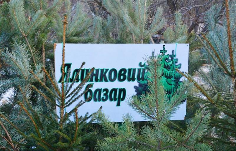 У Боздоському парку в Ужгороді буде новорічний ялинковий ярмарок.