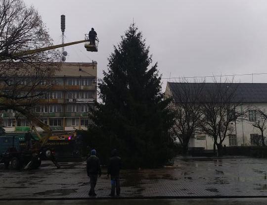 У центрі Виноградова встановили головну ялинку міста