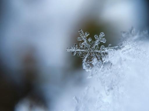 Погода на тиждень: синоптики розповіли, коли на Закарпатті похолодає і вдарять морози