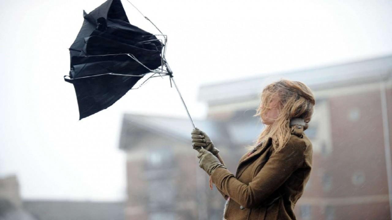 На Закарпатті очікують негоду: прогнозують дуже сильний вітер та значні опади