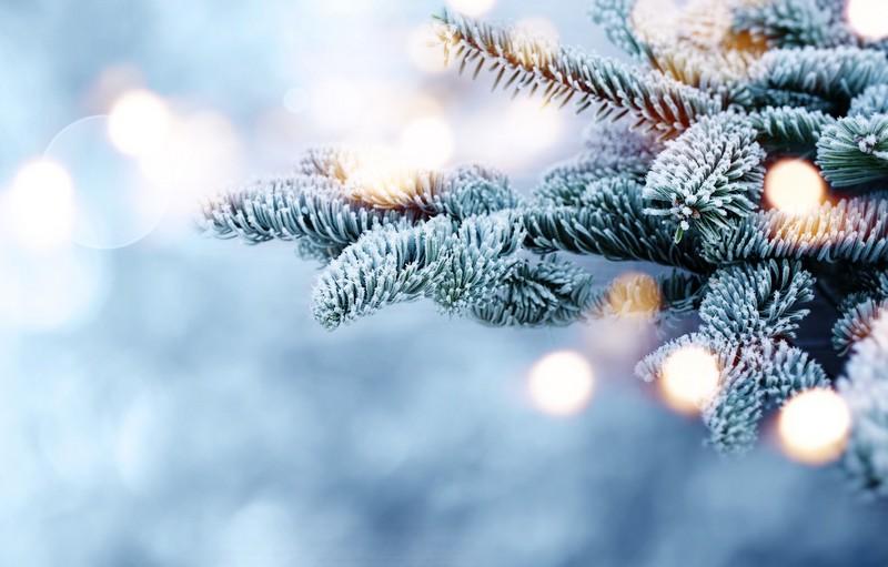 Погода на Різдво та коли вдарять сильні морози
