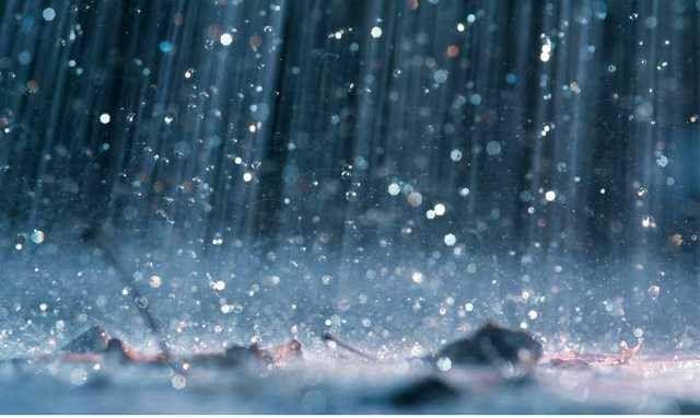 На Закарпатті очікують сильні опади та підняття рівнів води у річках