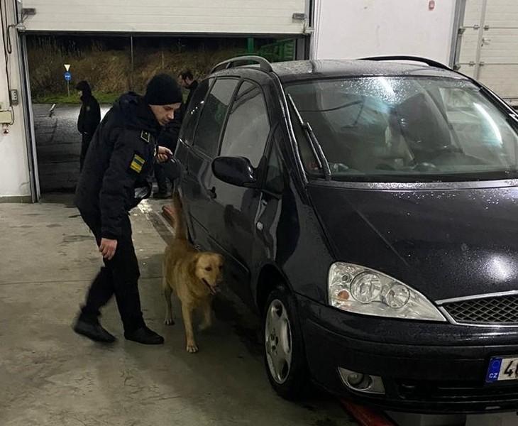 Специфічний запах марихуани видав чеха на українсько-словацькому кордоні