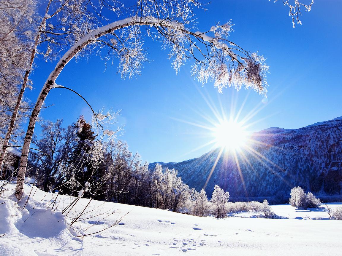 На Закарпатті відчутно похолодає: прогноз погоди на найближчі кілька днів