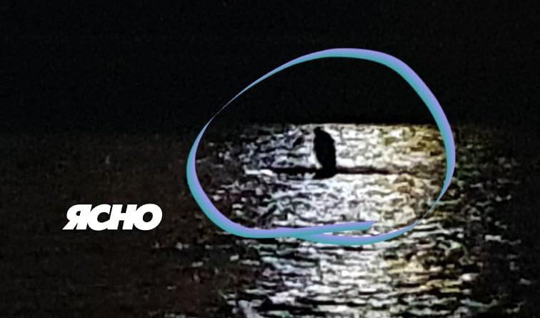 В Ужгороді зняли на відео дивну поведінку чоловіка: він заліз у річку та кричав