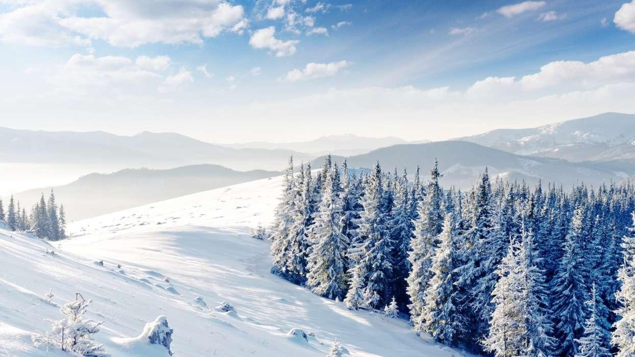 У горах Закарпаття заблукав турист із Дніпра