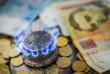 Тарифи на газ знизять тільки з лютого і тимчасово, потім ціни будуть ринковими, – міністр