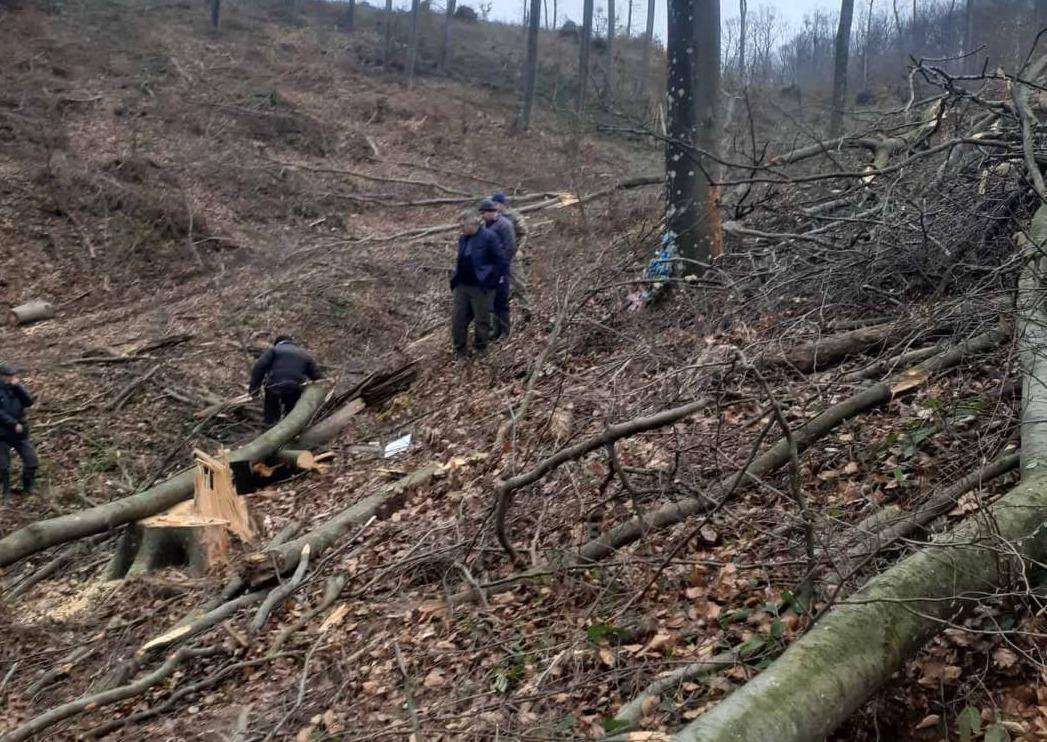 Трагедія на Мукачівщині: загинув чоловік. Встановлено попередню причину смерті