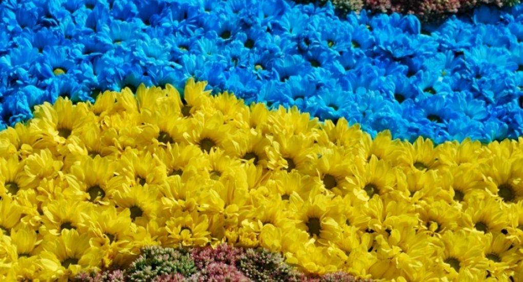 Мукачівські школярі серед переможців Всеукраїнської акції: стали відомі імена призерів