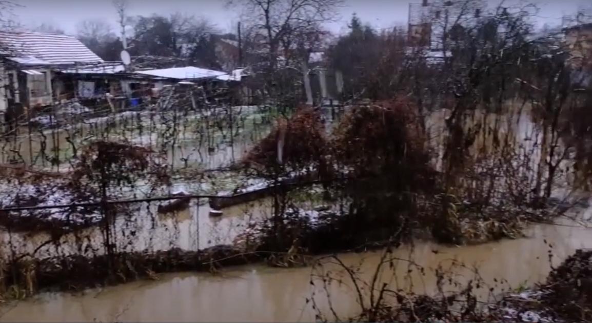Підтоплені дворогосподарства та повалені дерева: наслідки негоди на Закарпатті