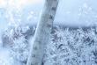 На Закарпаття сунуть морози. В області очікують ускладнення погодних умов