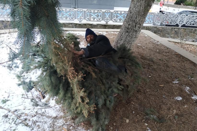 Спав у центрі Мукачева під гілками: із чоловіком трапилась біда