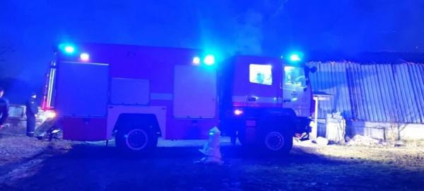 Згоріло багато тварин: опубліковано фото з місця нічної пожежі у Мукачеві