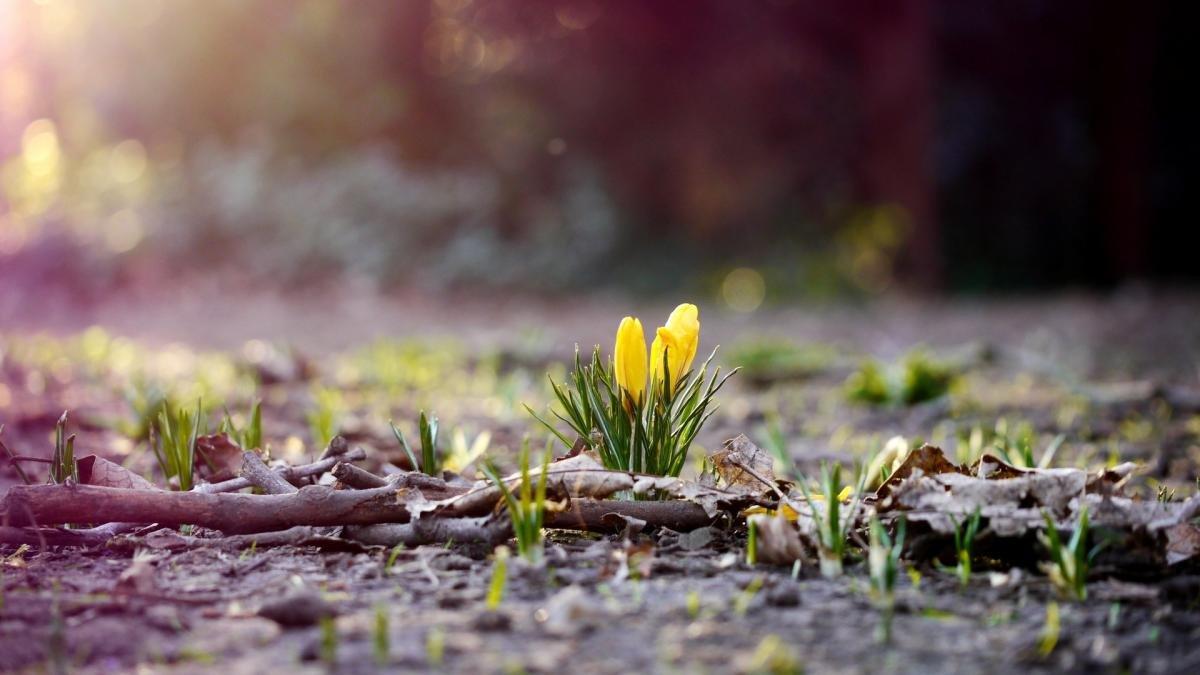 4 березня свято та День ангела. Що не можна сьогодні робити