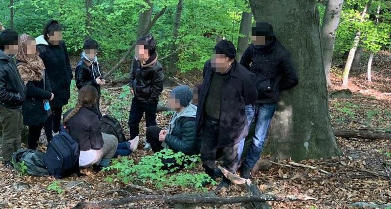 На Закарпатті викрили організовану злочинну групу