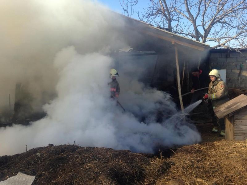 У селі на Виноградівщині вирувала пожежа