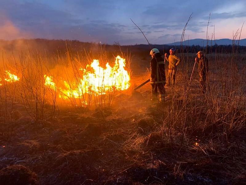 За вихідні на Закарпатті сталися 34 пожежі в екосистемах