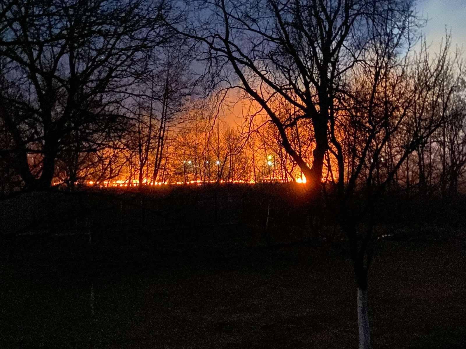 Рятувальники показали фото великої пожежі на Іршавщині