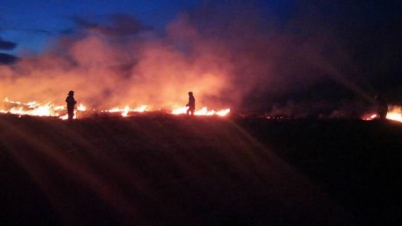 Вночі поблизу Мукачева вирувала велика пожежа