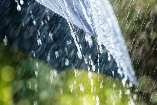 Місцями сильні дощі та грози: на Закарпатті оголосили штормове попередження