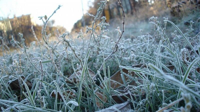 Погода на завтра: закарпатців попереджають про сильні заморозки