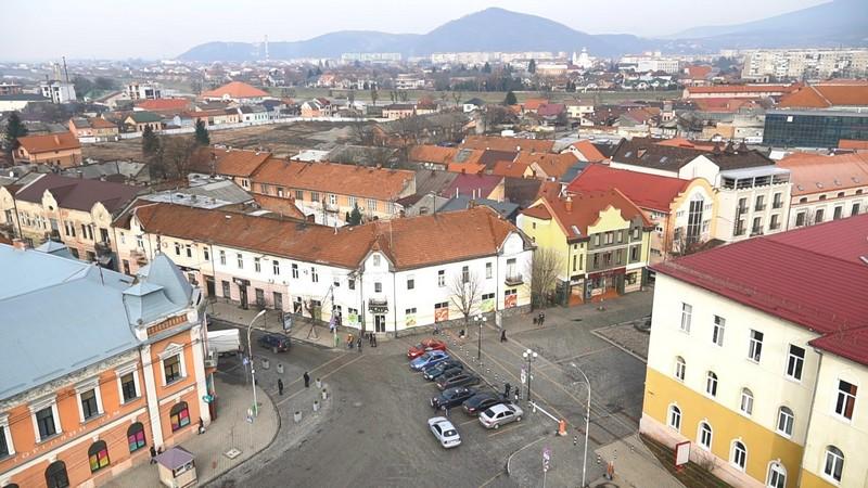 У підвалах багатоповерхівок, парках, дитсадках, медзакладах: у Мукачеві проведуть масштабну дератизацію
