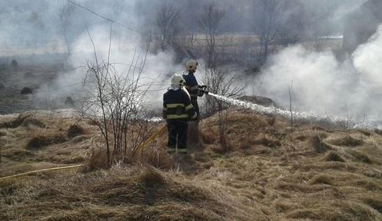За добу в області згоріло понад 27 гектарів сухої трави