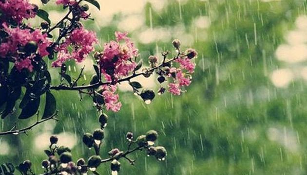 Дощі та грози: синоптики дали прогноз на тиждень