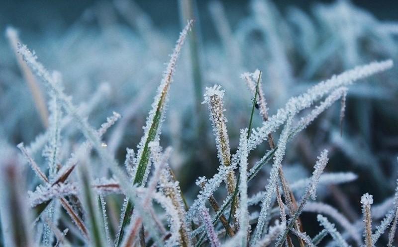 На Закарпатті завтра очікують заморозки