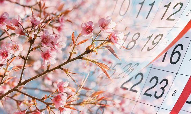 Травень-2021: головні новації місяця