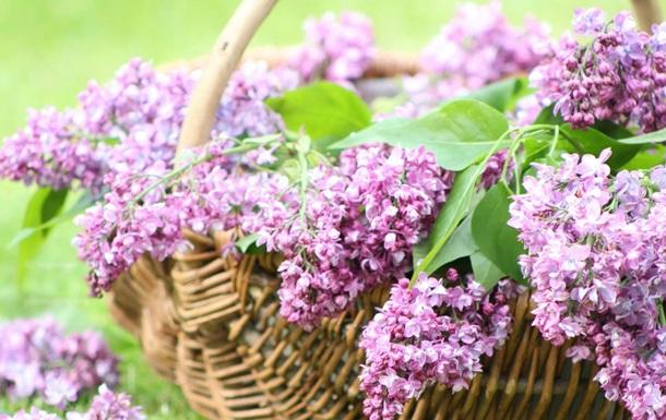 4 травня: яке свято, народні прикмети та що не можна робити в цей день