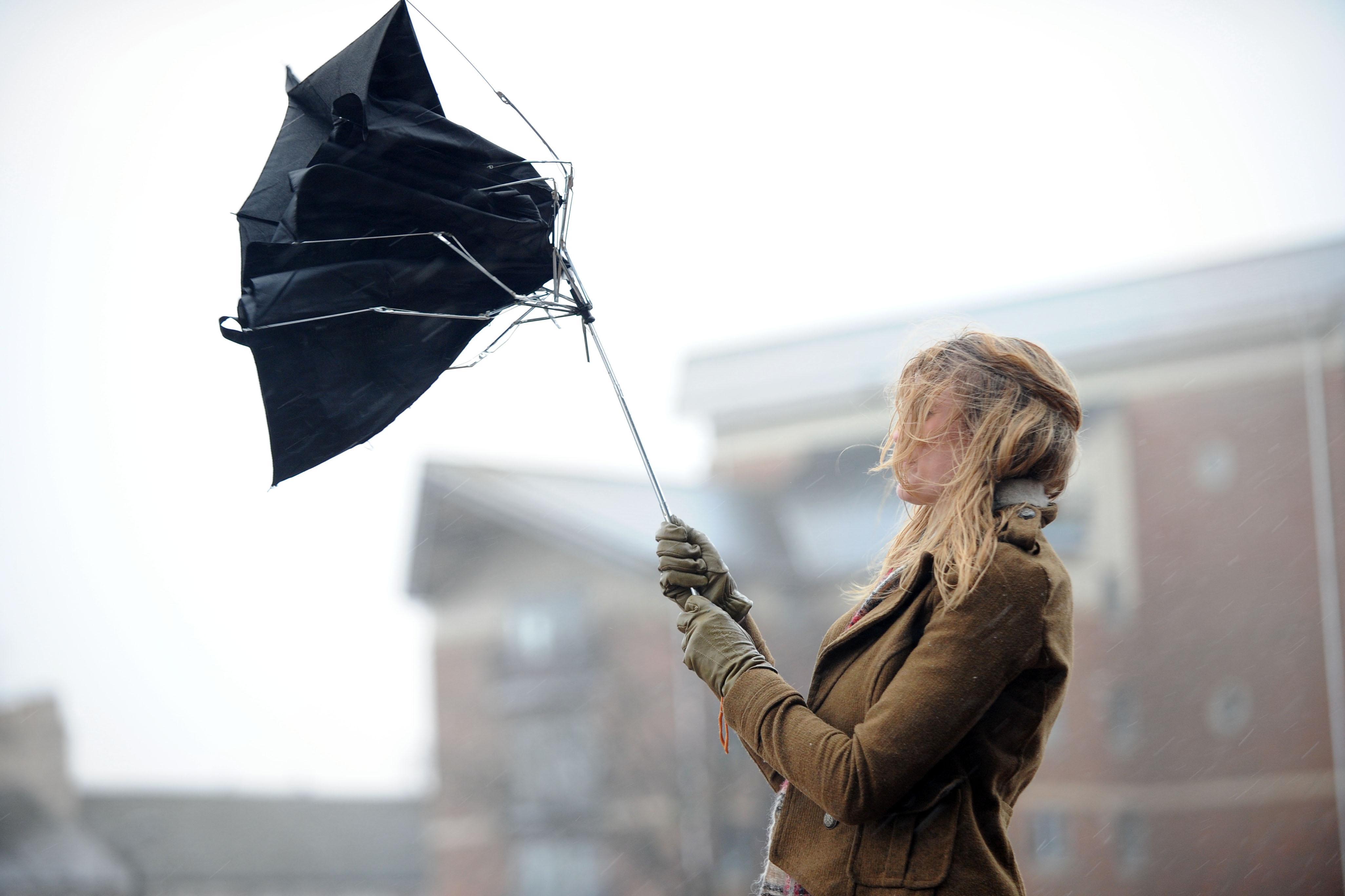 На Закарпатті оголосили штормове попередження: чого очікувати