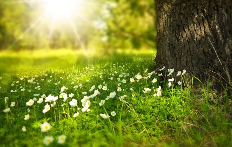 27 травня: яке сьогодні свято
