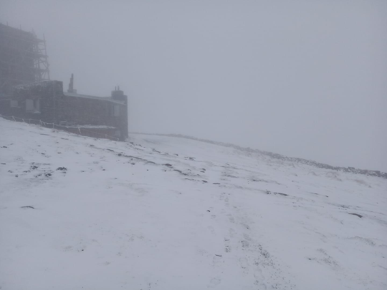 Напередодні літа в Карпатах випав сніг