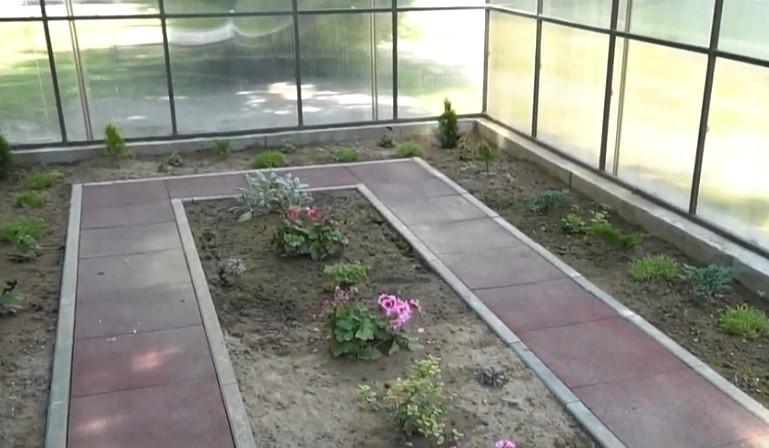 В одному із ліцеїв Мукачева облаштували ботанічний сад