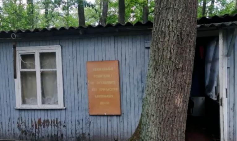 10-річна дівчинка із Закарпаття загинула на Київщині, намагаючись врятувати свого братика