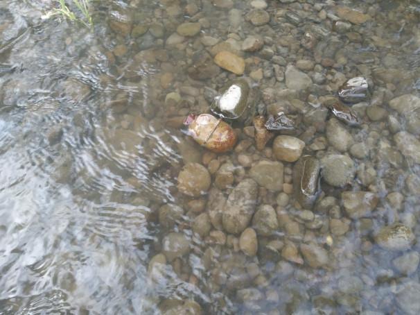 Купаючись в річці, чоловік натрапив на небезпечну знахідку