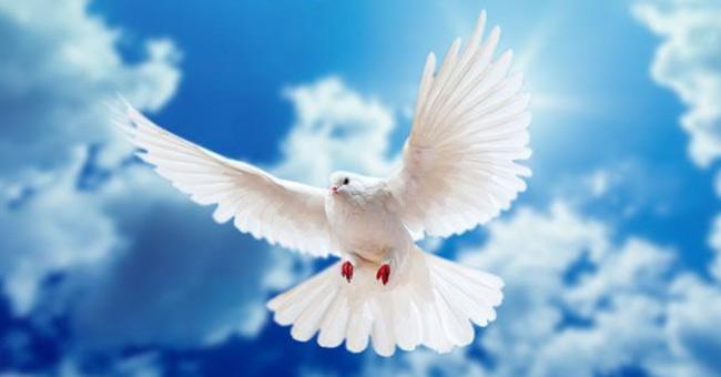 День Святого Духа: традиції 21 червня, прикмети та що не можна робити цього дня