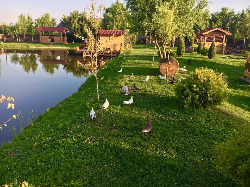 Де орендувати альтанку (беседку) біля Мукачева та Ужгорода та які ціни 2021